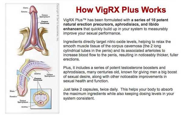 Como Tomar Las Pastillas VigRX Plus
