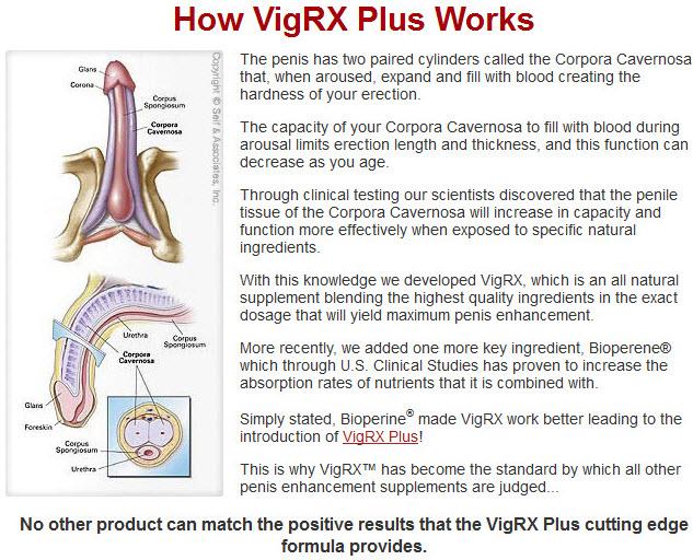 VigRX Plus Verdad O Mentira